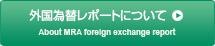 外国為替レポートについて